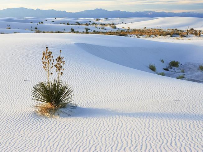 Ngắn nhìn cảnh đẹp của đồi cát tại Phan thiết