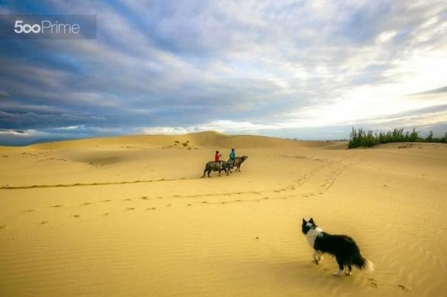 Toàn bộ khung cảnh đồi cát hiện ra quyến rũ, mê hoặc du khách