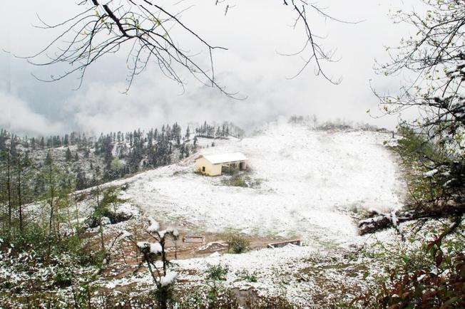 Tuyết Sa Pa nguồn cảm hứng bất tận cho tác phẩm nghệ thuật