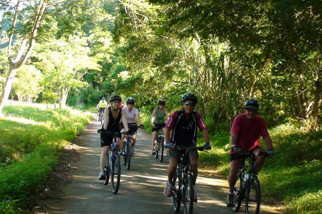 Đạp xe trong rừng sự thi vị giữa hoang sơ đại ngàn