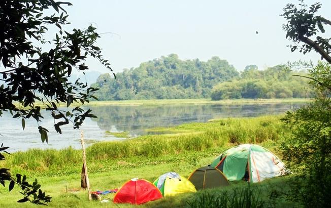Cắm trại để cảm nhận hương đêm của rừng