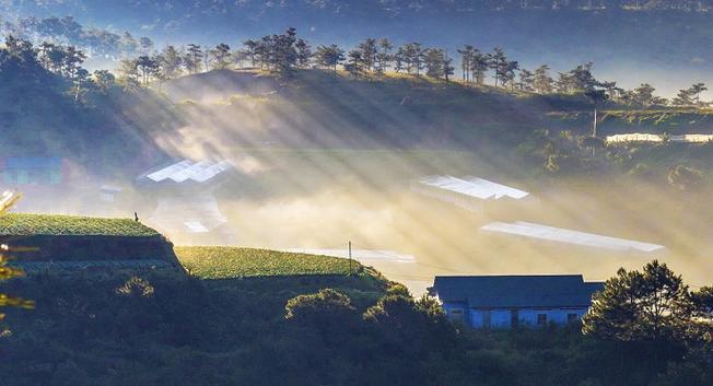 Làn sương mỏng dần tan dưới ánh mặt trời càng làm cho khung cảnh thêm phần huyển ảo