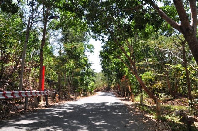 Con đường vào núi Minh Đạm