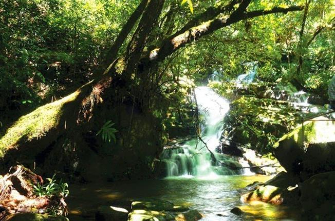 Thác Thiên Thai nằm trong khu vực vườn quốc gia Bidoup