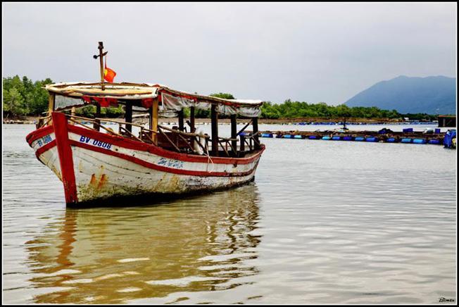Thuyền đưa đến làng bè Long Sơn