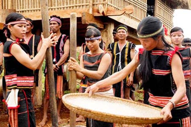 Lễ hội cúng Cơm mới của đồng bào dân tộc Tây Nguyên