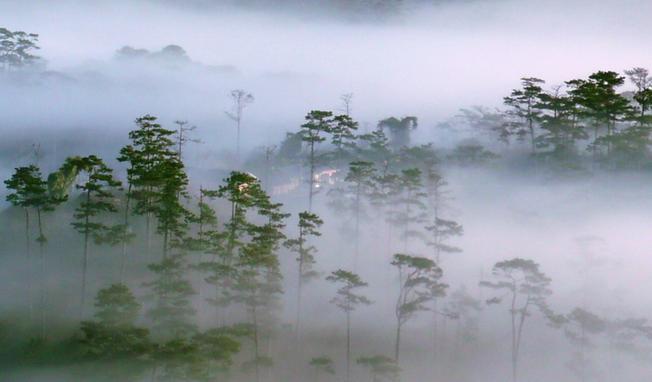 Sương mù bao phủ