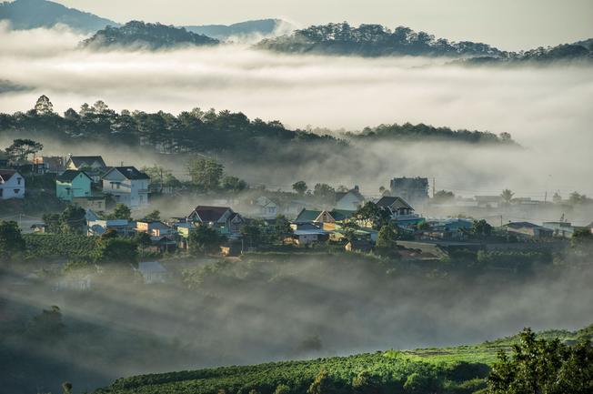 Sương mù lãng đãng, phủ lên cảnh vật