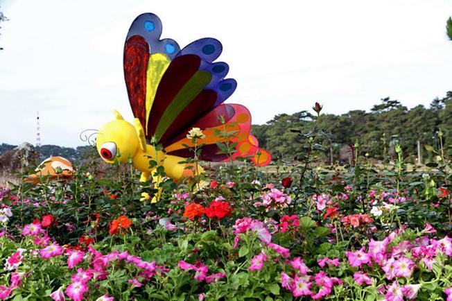Chú ong khổng lồ bên vườn hoa