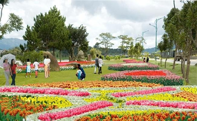 Vườn hoa tại trung tâm Đà Lạt