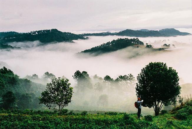 Vẻ đẹp sương sớm của Trại Mát