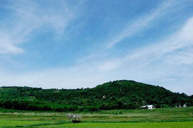 Thiên nhiên xanh ngát một màu