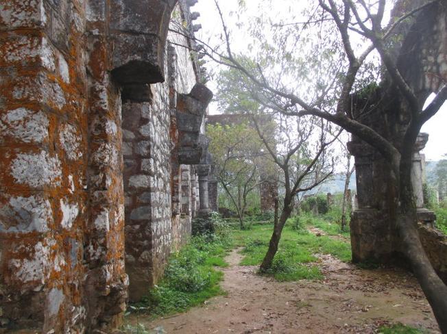 Những cây đào rừng mọc xung quanh Tu viện làm khung cảnh thêm hữu tình