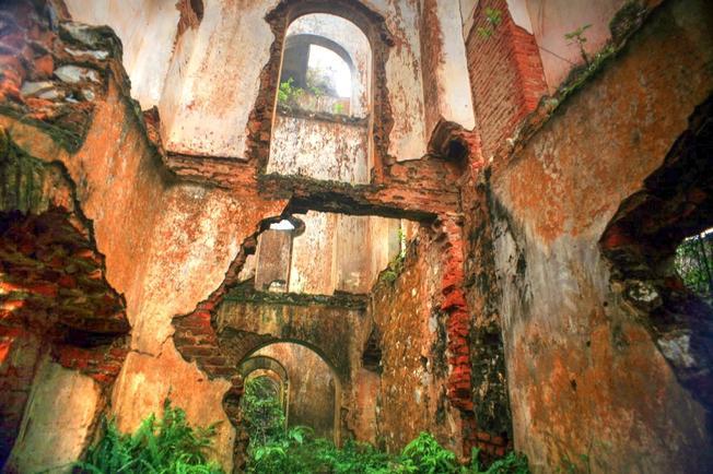 Rêu phủ kín tường nhuốm màu thời gian