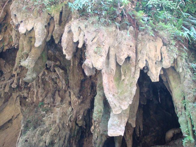 Bên ngoài một hang động
