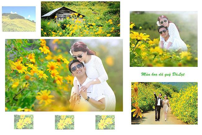 Chụp ảnh cưới mùa hoa dã quỳ Đà Lạt hấp dẫn nhiều du khách