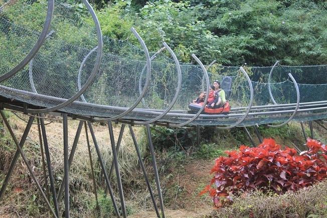 Đi máng trượt ngắm thác Datanla và đại ngàn rừng xanh