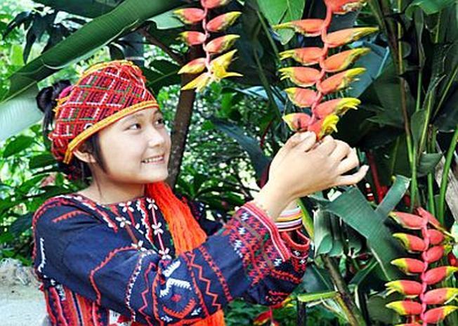 Cô gái sơn cước tại lễ hội Hoa Chuối
