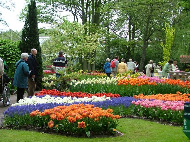 Lễ hội hoa Đà Lạt luôn hấp dẫn nhiều du khách tham quan