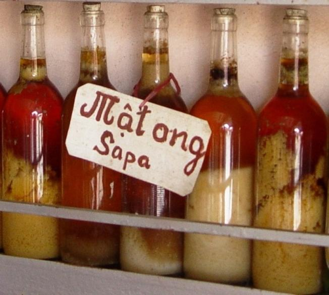 Mật ong rừng Sa Pa là món đặc sản được du khách ưa chuộng