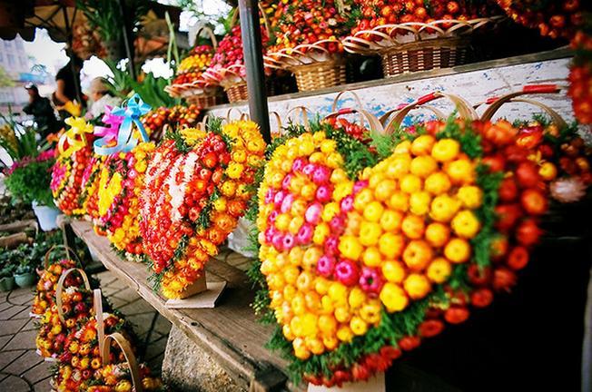 Những giỏ hoa bất tử màu sắc
