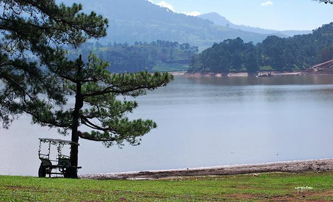 Điểm du lịch Đà Lạt Hồ Suối Vàng Vẻ đẹp nên thơ của Đà Lạt