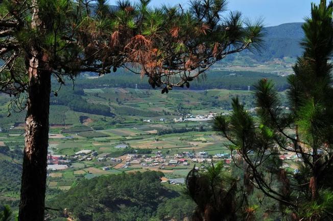 Điểm du lịch Đà Lạt – D'ran một màu xanh mướt của núi đồi