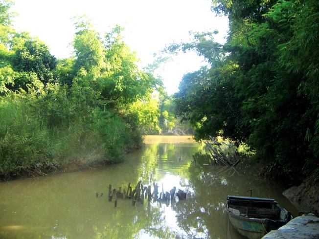 Một nhánh sông xưa của làng cổ Phú Vinh