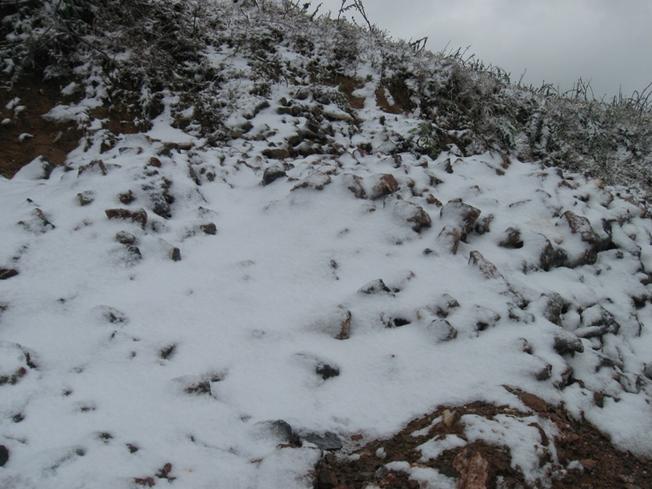 Tuyết giăng trắng như cánh đồng muối trên vùng cao