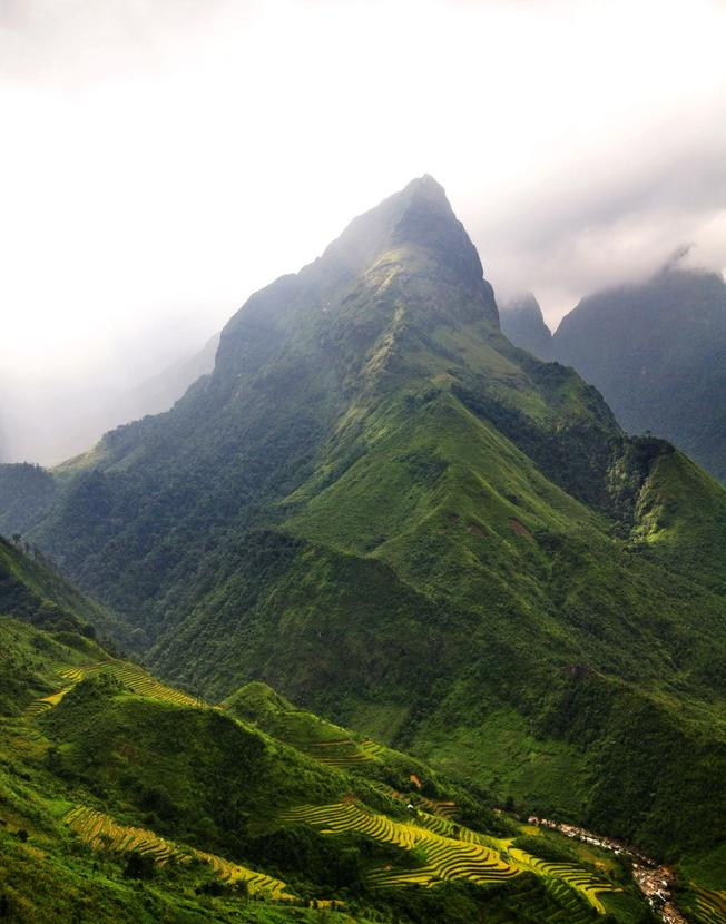 Đỉnh núi cao nhất trong dãy núi Ngũ Chỉ Sơn