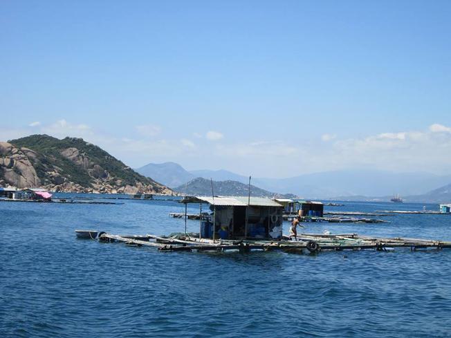 Một bè nuôi cá nhỏ tại đảo Bình Ba