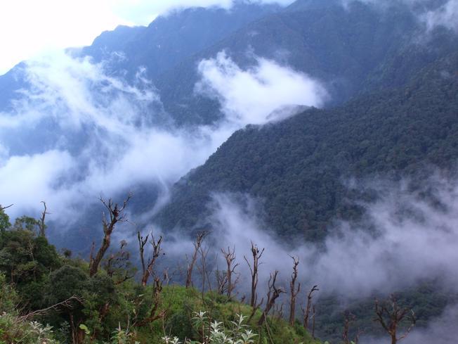 Mây mù trên đỉnh núi