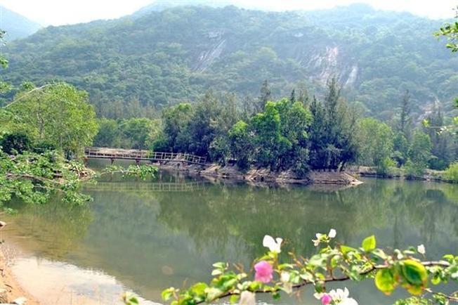 Suối Hoa Lan mơ mộng giữ núi rừng (Ảnh sưu tầm)