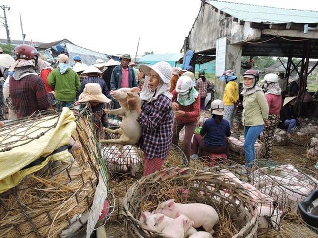 Phiên chợ heo con Bà Rén