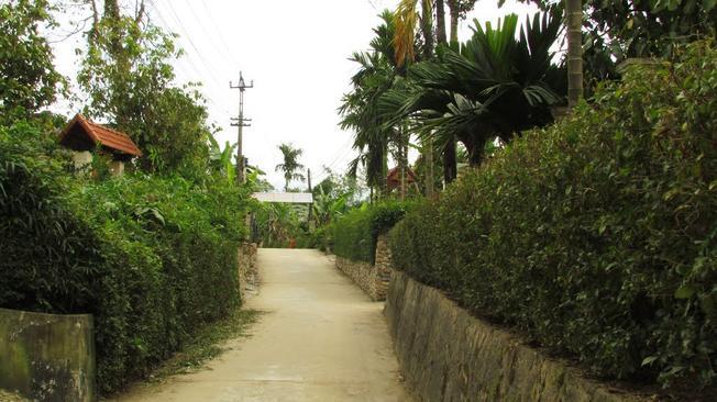Làng Đại Bình một trong những địa điểm du lịch Hội An nổi tiếng