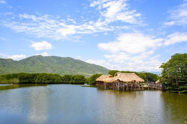 Cánh rừng đước duy nhất còn lại ở Nha Trang hiện nay