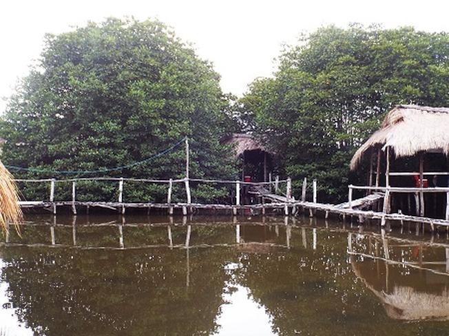 Rừng đước sẽ là một điểm nhấn thú vị trong chuyến du lịch Nha Trang