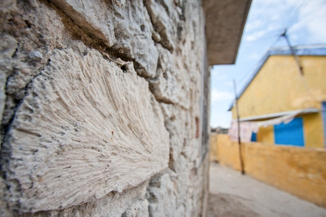 Những bức tường cũ kỹ và xù xì bị bào mòn qua năm tháng chỉ còn trơ lại lớp vỏ sò và san hô