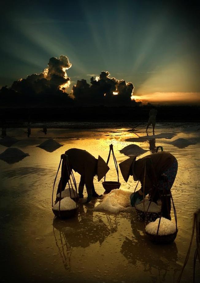 Món quà của biển cho Hòn Khói