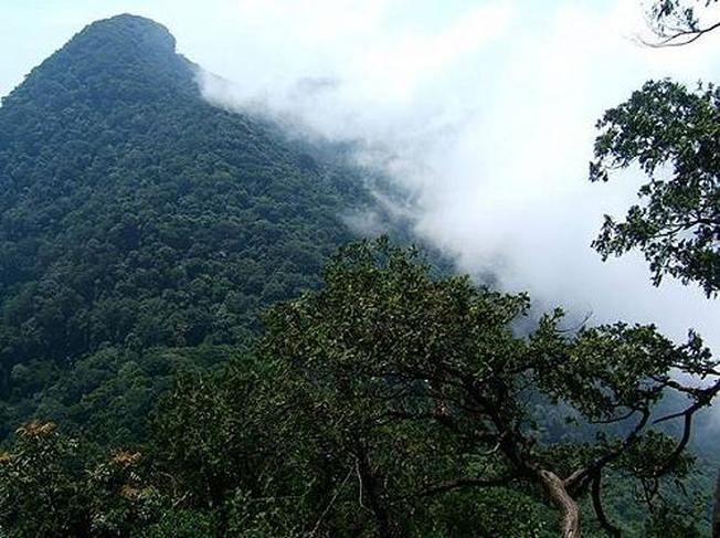 Đỉnh Ngọc Linh địa điểm du lịch ưa thích của dân Phượt