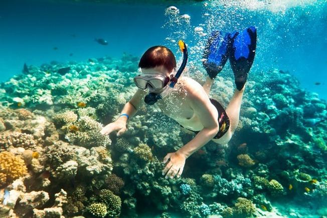 Lặn biển ngắm san hô là gợi ý tuyệt vời khi bạn đi du lịch Nha Trang