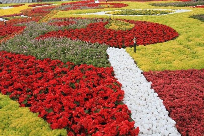 Một góc của vườn hoa Bà Nà