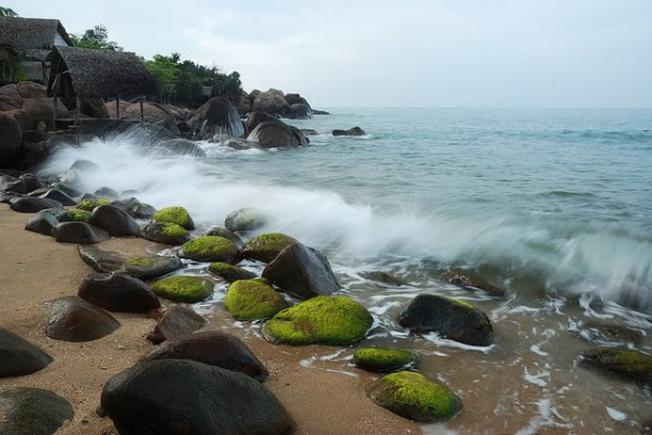 Con sóng vỗ bờ