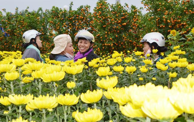 Vườn hoa 2 – 9 vào những dịp Tết