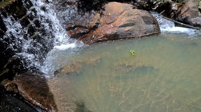 Thỏa thích ngâm mình trong làn nước xanh tươi mát của suối Tiên
