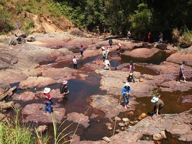 Nhiều người đến thăm trại cá hồi