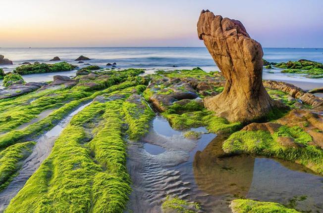 Một góc Cổ Thạch xanh mướt đầy quyến rũ mùa rêu