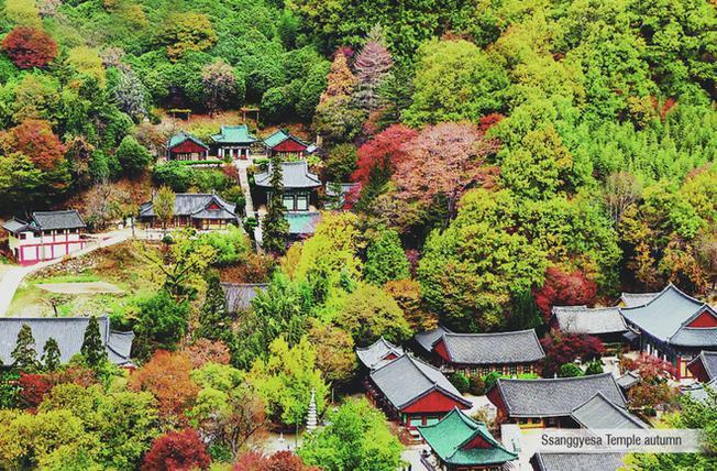 Chùa nghìn tuổi Ssanggye nằm giữa rừng cây ngũ sắc
