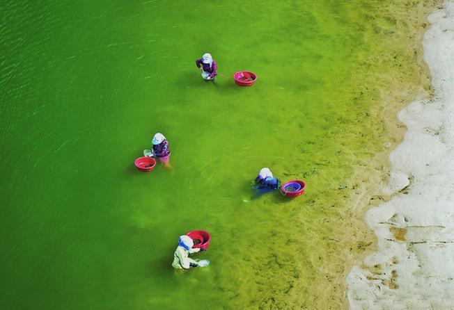 Con sông Seomjin-gang thơ mộng nổi tiếng