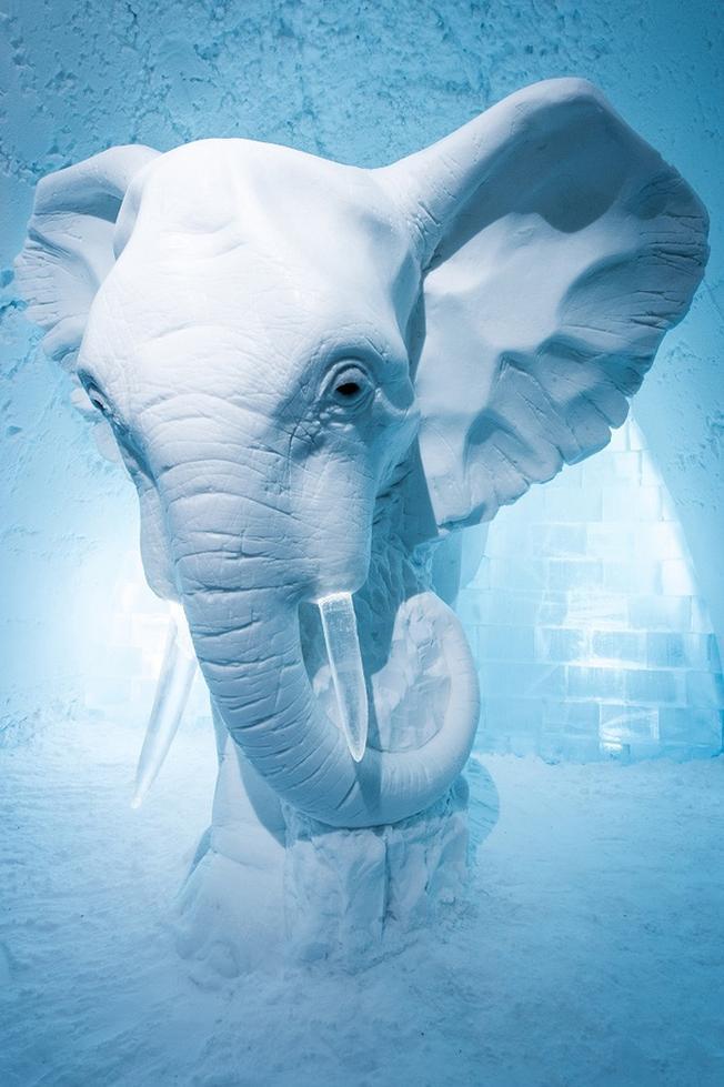 Chú voi khổng lồ bằng băng cao 3m được đặt ở chính giữa sảnh khách sạn